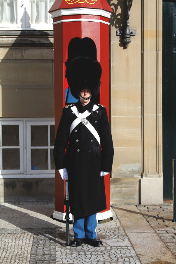 military accessories from denmark castle guard