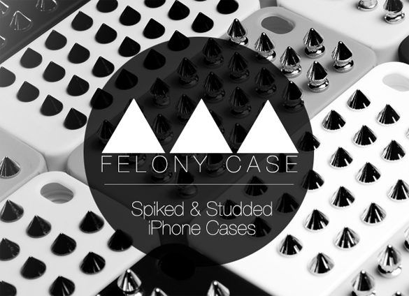 logo felony case